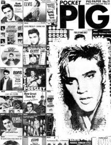 PigPaper11