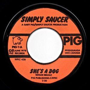 Simply Saucer 45